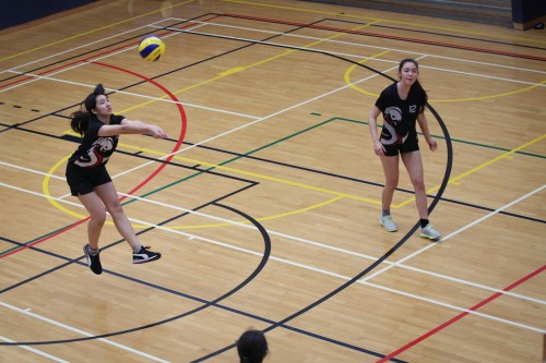 ACAMIS Volleyball success for DC
