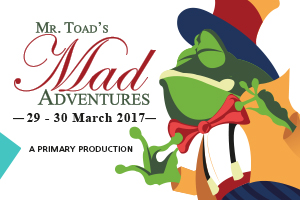 Toads-explorer-graphic